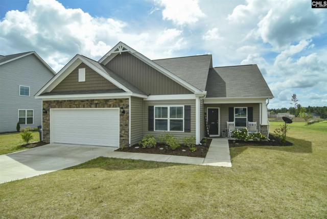 430 Winterfield Drive, Lexington, SC 29073 (MLS #469389) :: Home Advantage Realty, LLC