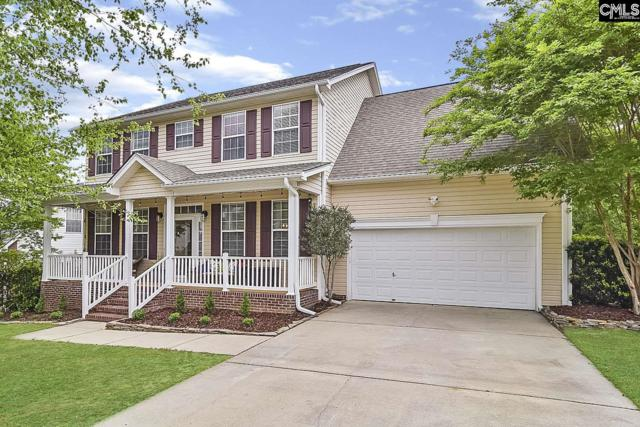 16 Cabin Court, Irmo, SC 29063 (MLS #469580) :: The Meade Team