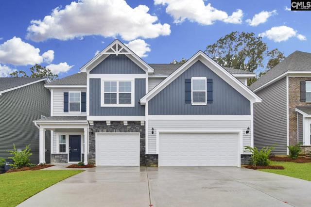 1254 Portrait Hill Drive, Chapin, SC 29036 (MLS #469855) :: EXIT Real Estate Consultants
