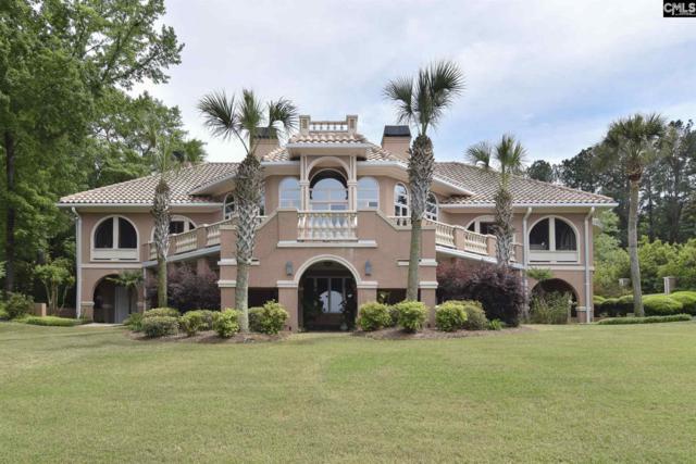 157 Rudder Ct, Lexington, SC 29072 (MLS #470068) :: EXIT Real Estate Consultants