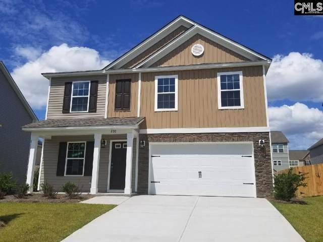 820 Red Solstice (Lot 150) Court, Lexington, SC 29073 (MLS #470069) :: Home Advantage Realty, LLC