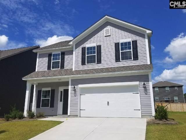824 Red Solstice (Lot 151) Court, Lexington, SC 29073 (MLS #470076) :: Home Advantage Realty, LLC