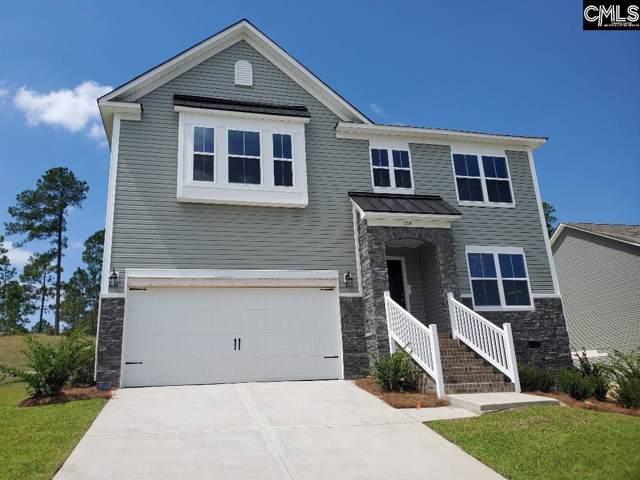 204 Cassique (Lot 75) Drive, Lexington, SC 29073 (MLS #471009) :: Home Advantage Realty, LLC