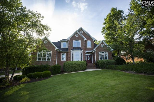 217 Racket Road, Chapin, SC 29036 (MLS #471382) :: EXIT Real Estate Consultants