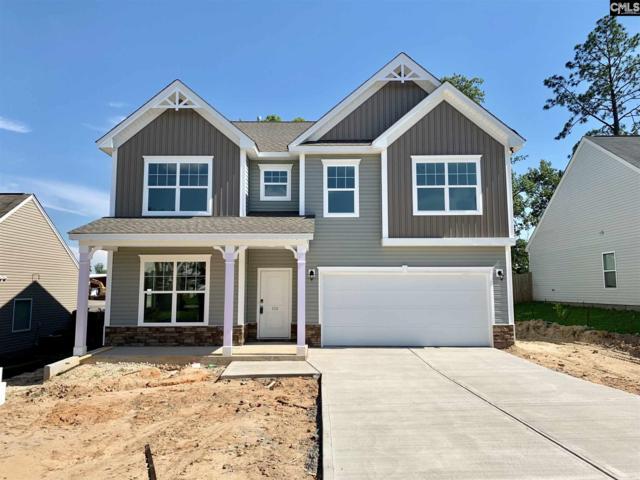 126 Greenbank Drive, Lexington, SC 29073 (MLS #471963) :: Home Advantage Realty, LLC