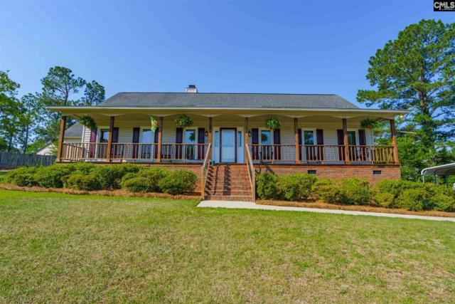 105 Cabin Creek Court, Lexington, SC 29073 (MLS #472059) :: The Olivia Cooley Group at Keller Williams Realty