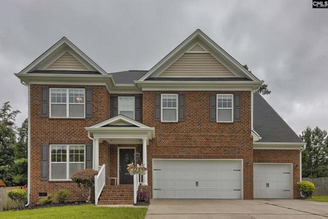 420 Maypop Lane, Irmo, SC 29063 (MLS #472110) :: EXIT Real Estate Consultants