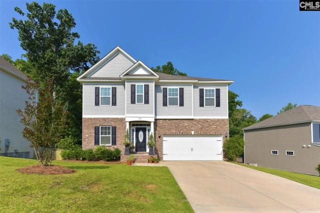 177 Stonemont Drive, Irmo, SC 29063 (MLS #472801) :: EXIT Real Estate Consultants