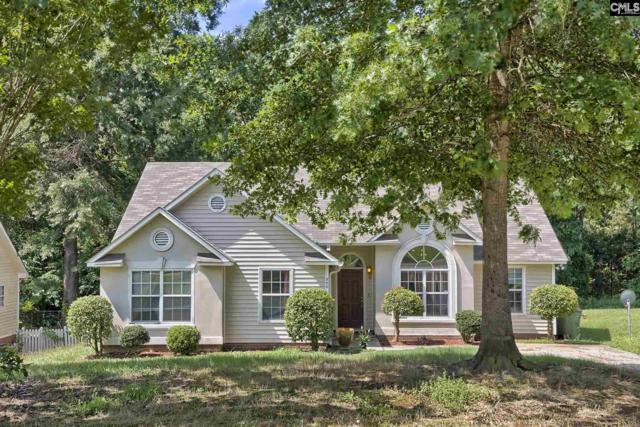 200 Scanley Road, Irmo, SC 29063 (MLS #473106) :: Home Advantage Realty, LLC