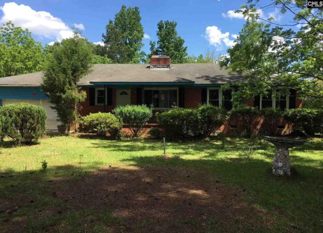 1400 Dry Branch Road, Hopkins, SC 29061 (MLS #473153) :: Home Advantage Realty, LLC