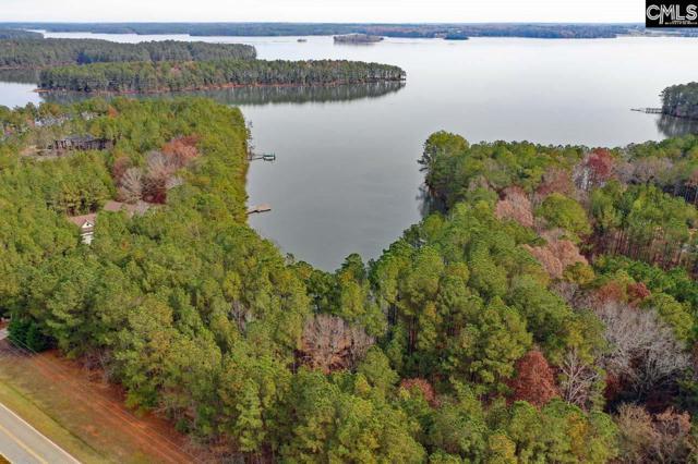 1131 Cole Trestle Road #16, Blair, SC 29015 (MLS #473266) :: Resource Realty Group
