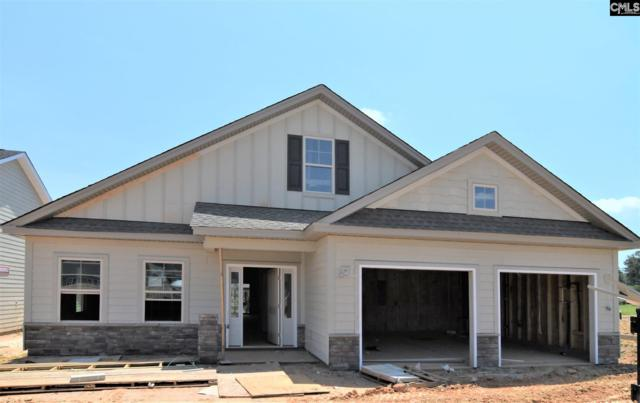 243 Matisse Trail, Chapin, SC 29036 (MLS #473306) :: EXIT Real Estate Consultants