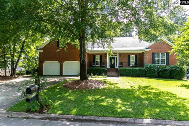 347 Night Harbor Drive, Chapin, SC 29036 (MLS #473373) :: EXIT Real Estate Consultants