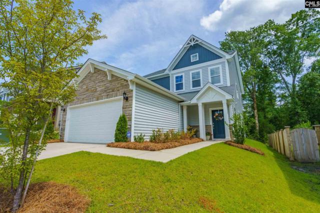 306 Lanyard Lane, Chapin, SC 29036 (MLS #473566) :: EXIT Real Estate Consultants
