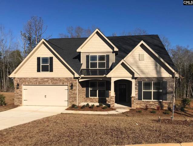 227 Chapin Brook Court, Chapin, SC 29036 (MLS #473632) :: EXIT Real Estate Consultants