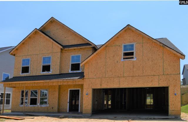 429 Maria Posada, Chapin, SC 29036 (MLS #473690) :: EXIT Real Estate Consultants