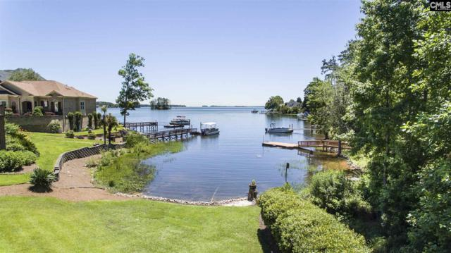 120 Pointe Overlook Drive, Chapin, SC 29036 (MLS #473727) :: EXIT Real Estate Consultants