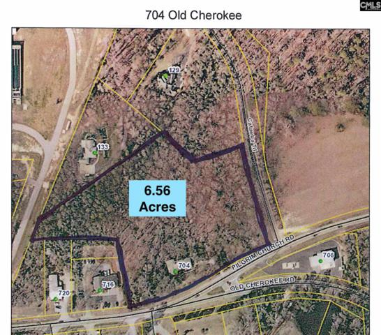 704 Old Cherokee Rd, Lexington, SC 29072 (MLS #473732) :: Home Advantage Realty, LLC