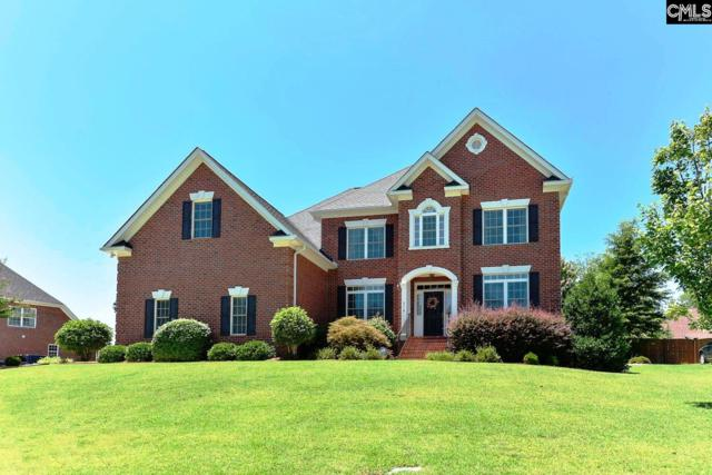 316 Anchor Bend Drive, Chapin, SC 29036 (MLS #473736) :: Loveless & Yarborough Real Estate