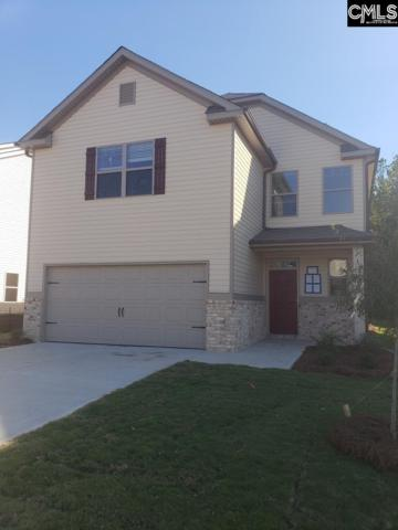 275 Bickley View Court, Chapin, SC 29036 (MLS #473828) :: EXIT Real Estate Consultants