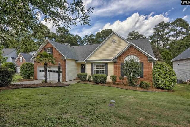 320 Amberwood Circle, Irmo, SC 29063 (MLS #473841) :: EXIT Real Estate Consultants