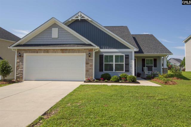 329 Eagle Pointe Drive, Chapin, SC 29036 (MLS #473886) :: Home Advantage Realty, LLC
