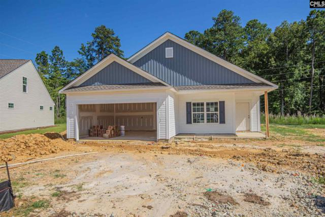 221 Elsoma Drive, Chapin, SC 29036 (MLS #474189) :: The Olivia Cooley Group at Keller Williams Realty