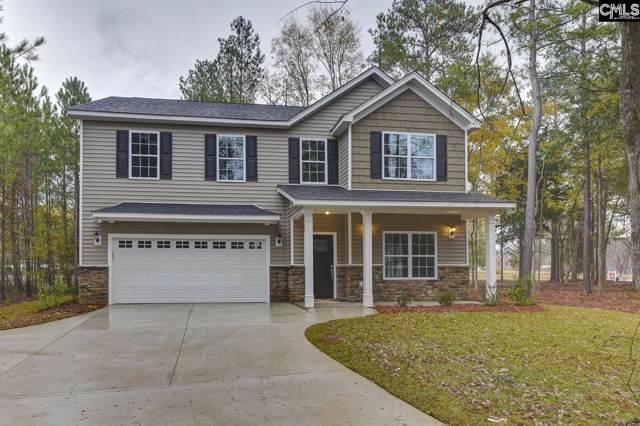 106 Stucks Point Drive, Chapin, SC 29036 (MLS #474535) :: Loveless & Yarborough Real Estate