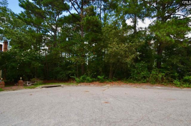 42 Mallet Hill Court, Columbia, SC 29223 (MLS #474794) :: EXIT Real Estate Consultants