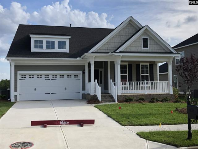 607 Harbour Pointe Drive, Columbia, SC 29229 (MLS #474923) :: Home Advantage Realty, LLC
