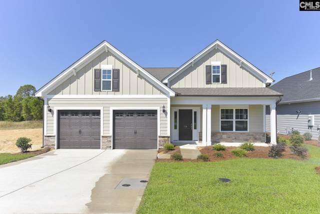 739 Long Iron Lane, Blythewood, SC 29016 (MLS #474970) :: Loveless & Yarborough Real Estate