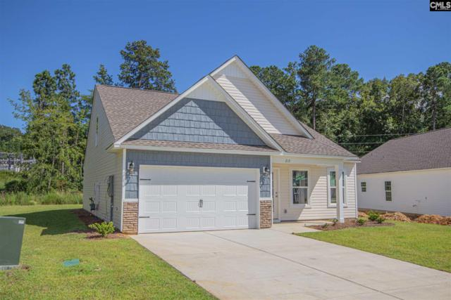 217 Elsoma Drive, Chapin, SC 29036 (MLS #474990) :: The Olivia Cooley Group at Keller Williams Realty