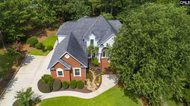 131 Harvest Moon Dr, Leesville, SC 29070 (MLS #475383) :: EXIT Real Estate Consultants