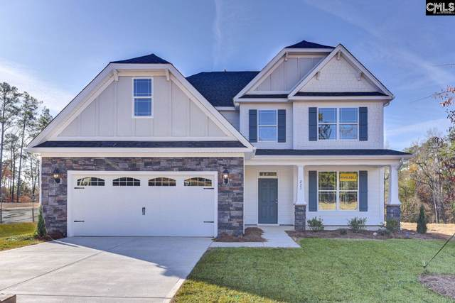 223 Laurelbrook Drive, Chapin, SC 29036 (MLS #475738) :: EXIT Real Estate Consultants