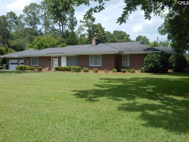 121 Harris Street, Bishopville, SC 29010 (MLS #476002) :: The Olivia Cooley Group at Keller Williams Realty