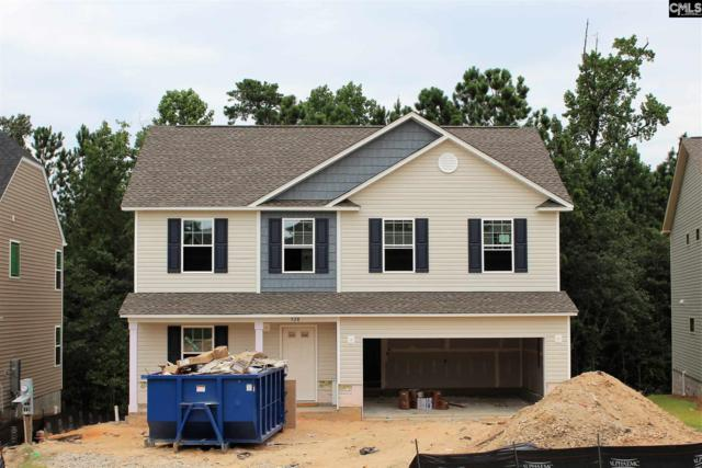 528 Holland (Lot 209) Road, Blythewood, SC 29016 (MLS #476486) :: EXIT Real Estate Consultants