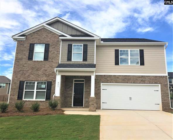 224 Village View Way, Lexington, SC 29072 (MLS #476535) :: The Olivia Cooley Group at Keller Williams Realty