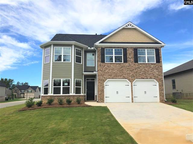 213 Village View Way, Lexington, SC 29072 (MLS #476536) :: The Olivia Cooley Group at Keller Williams Realty