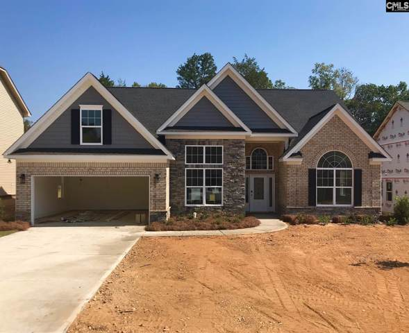 217 Chapin Brook Court, Chapin, SC 29036 (MLS #476559) :: The Meade Team