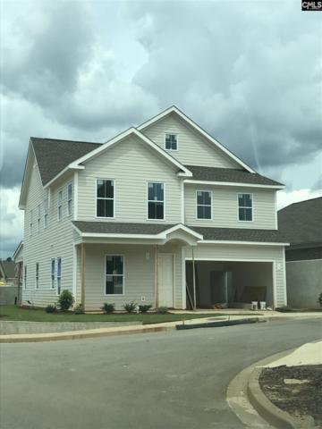 105 Emerald View Court, Lexington, SC 29072 (MLS #477226) :: EXIT Real Estate Consultants
