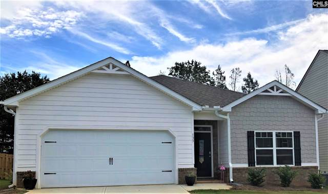 149 Village View Way, Lexington, SC 29072 (MLS #477709) :: The Olivia Cooley Group at Keller Williams Realty