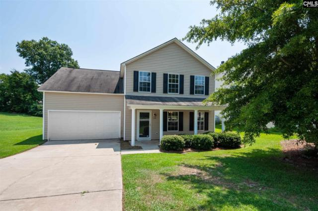 148 Wingspan Way, Chapin, SC 29036 (MLS #477778) :: EXIT Real Estate Consultants