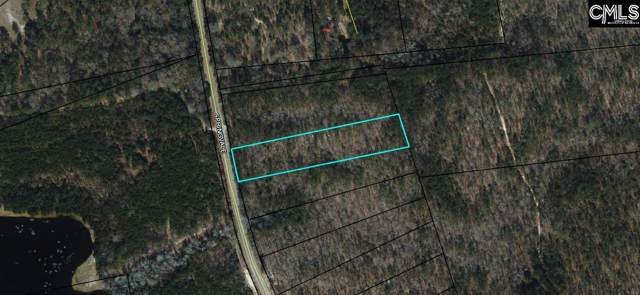 0 Springvale Road #2, Bishopville, SC 29010 (MLS #478816) :: EXIT Real Estate Consultants