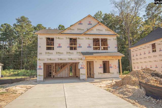 225 Elsoma Drive, Chapin, SC 29036 (MLS #479056) :: Home Advantage Realty, LLC