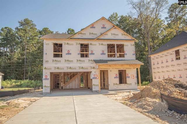 225 Elsoma Drive, Chapin, SC 29036 (MLS #479056) :: Loveless & Yarborough Real Estate