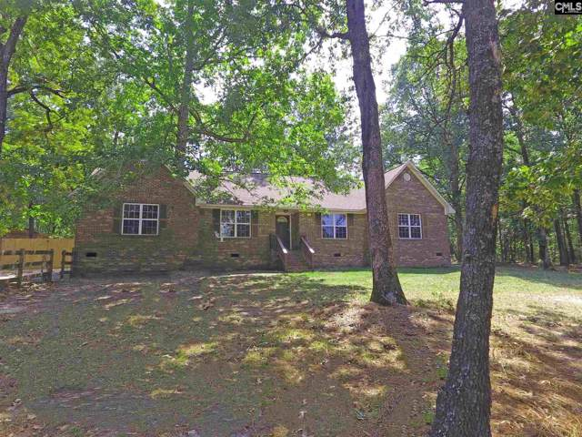 501 Valley Ridge Road, Swansea, SC 29160 (MLS #479781) :: Home Advantage Realty, LLC