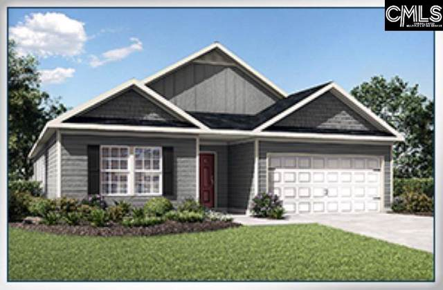 215 Common Reed Drive, Gilbert, SC 29054 (MLS #479848) :: EXIT Real Estate Consultants