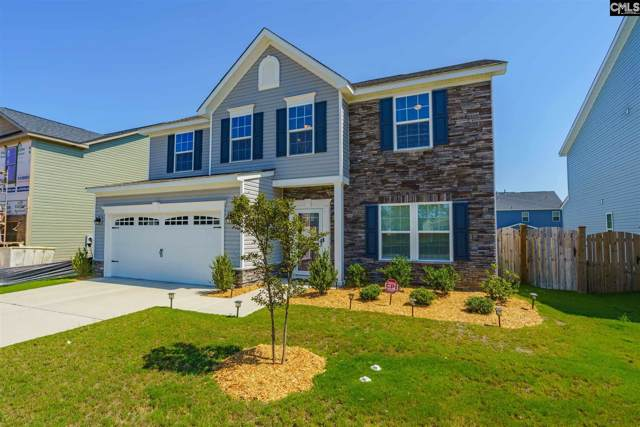 501 Kingsley View Road, Blythewood, SC 29016 (MLS #480079) :: The Olivia Cooley Group at Keller Williams Realty