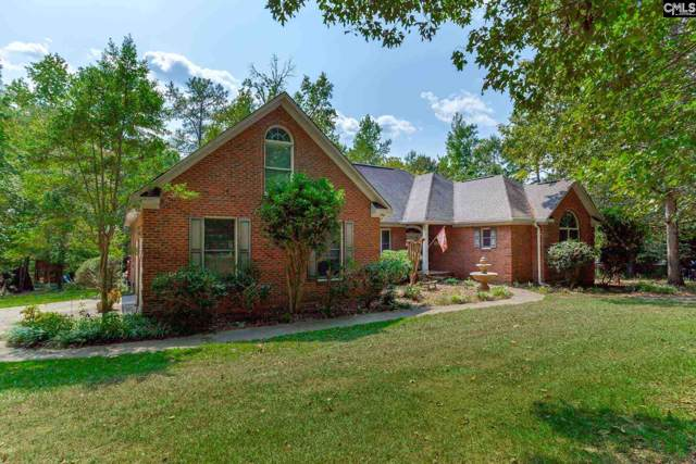 209 Pineview Church Road, Blythewood, SC 29016 (MLS #480219) :: Home Advantage Realty, LLC