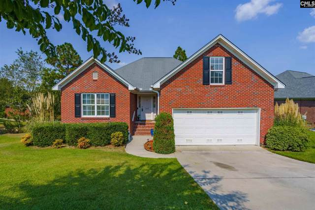 849 Heartleaf Drive, Columbia, SC 29229 (MLS #480843) :: Home Advantage Realty, LLC